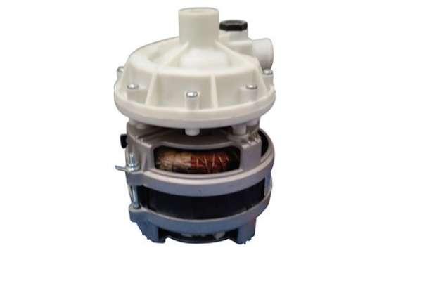 620124 MOTOR PUMP HP.0,25 V220/240/50